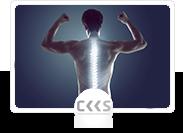 Kurs - zdrowy kręgosłup